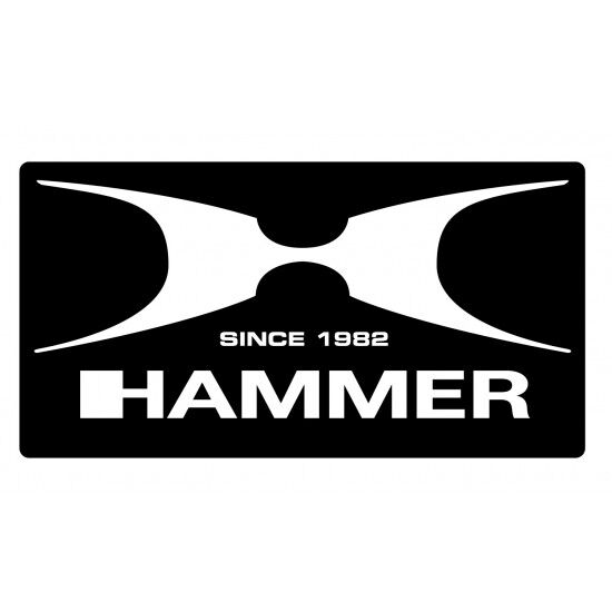 Bokshandschoen Hammer X shock Lady
