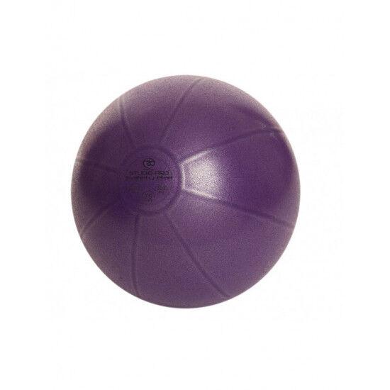 Swiss Ball 500 kg, 65 cm met pomp