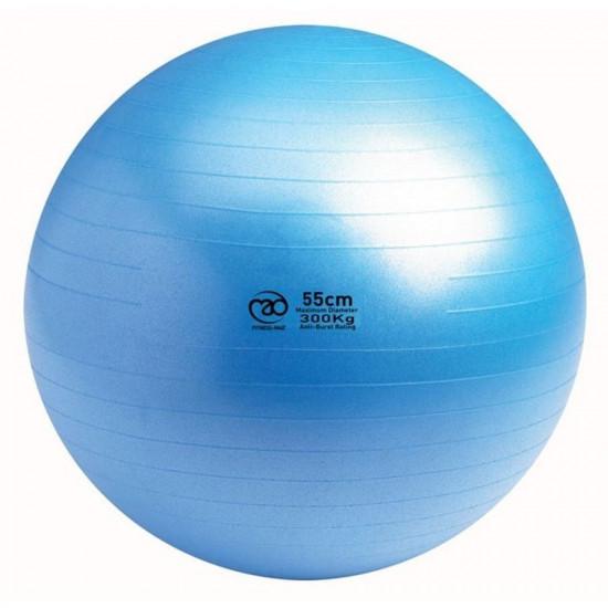 Swiss Ball   300 kg, 55 cm met pomp en online workout