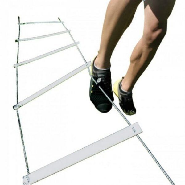 Spring back ladder